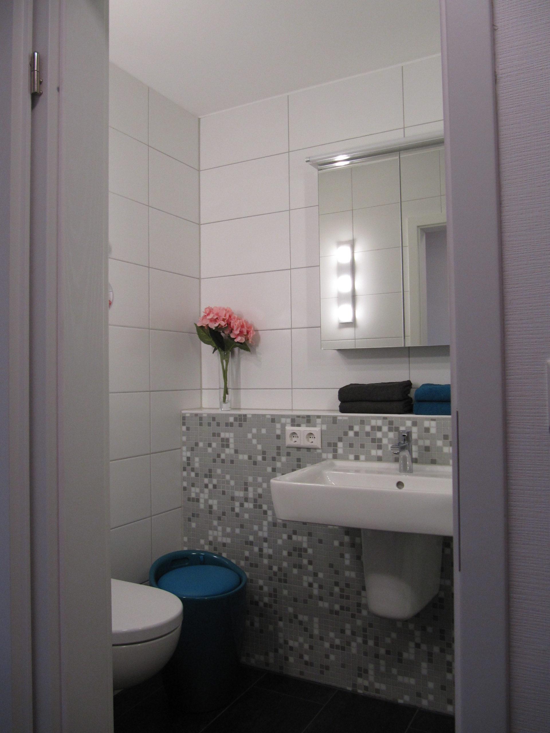 Blick ins Badezimmer auf Waschbecken, Spiegelschrank und Toilette
